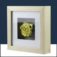 White Limed Shadow Box Frame with Mounted Flower